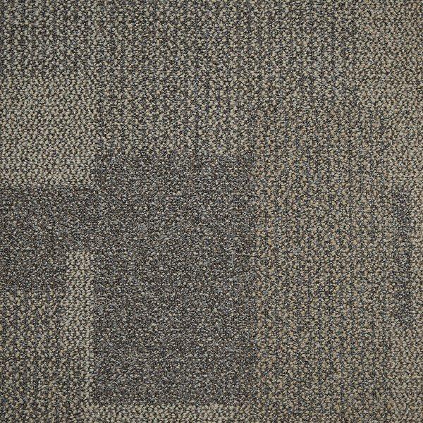Parchment 1628070