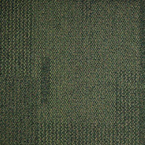 Pasture 1628025